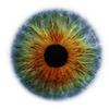 Аватар пользователя ziroYcam