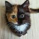 Аватар пользователя KakogoXrena