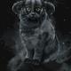Аватар пользователя RemusSh