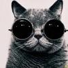 Аватар пользователя bazilio91