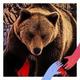 Аватар пользователя RomkaRussia