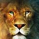 Аватар пользователя Gaxys