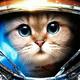 Аватар пользователя TolikDukalis