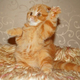 Аватар пользователя Domnin84