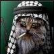 Аватар пользователя kolhao