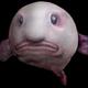 Аватар пользователя sovguy