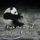 Аватар пользователя MadFokkenPanda