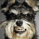 Аватар пользователя mr.Andersan