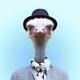 Аватар пользователя MrStraus