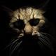 Аватар пользователя notHappyZombie