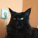 Аватар пользователя To4kacborki