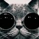 Аватар пользователя Servitus