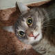 Аватар пользователя irinasss