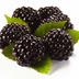 Black123Berry