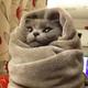 Аватар пользователя MontazhMan