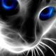 Аватар пользователя samfox1
