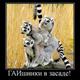 Аватар пользователя drunya1127
