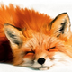 Аватар пользователя lissafeelgood
