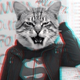 Аватар пользователя SMarmelad