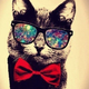 Аватар пользователя CATandCAT