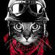 Аватар пользователя Kureval