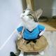 Аватар пользователя Nurmashidze