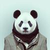 Аватар пользователя suntoucher