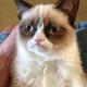 Аватар пользователя abat