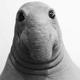 Аватар пользователя Gansserov