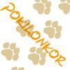 Аватар пользователя PokiLonkor
