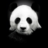 Аватар пользователя twotshow