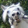 Аватар пользователя SunCreep
