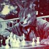 Аватар пользователя vacheronconst
