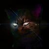 Аватар пользователя NokyShip