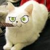 Аватар пользователя morfeus812
