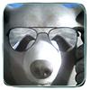 Аватар пользователя medvedor