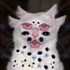 Аватар пользователя Lupusextenebrus
