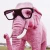 Аватар пользователя 40elephants