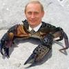 Аватар пользователя KrabNaGalerah