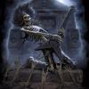 Аватар пользователя MetalKrot