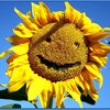 Аватар пользователя Maxura