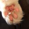 Аватар пользователя ayrin13