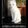 Аватар пользователя Dariaandreevna