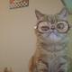 Аватар пользователя Sti4