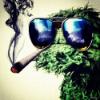 Аватар пользователя Leila25