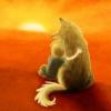 Аватар пользователя SpringTime