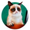 Аватар пользователя CreamDream