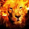 Аватар пользователя FireLion1