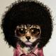 Аватар пользователя kuba4NF