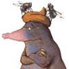 Аватар пользователя zloidooraque